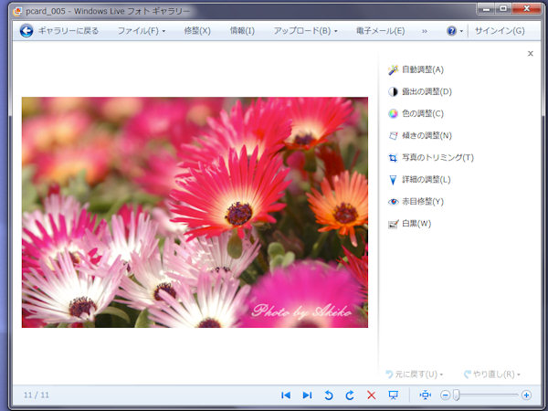 Blog_6_013