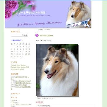 sblog_004.jpg