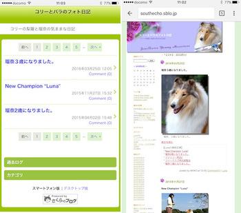 sblog_005.jpg